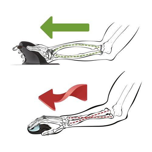 Ergonomiczna mysz pionowa Penguin® - bezprzewodowa: Mała